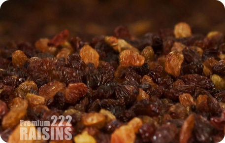 hamiyan yaghoutm raisins, 222, grape, bonab, golden raisins, sultana raisins